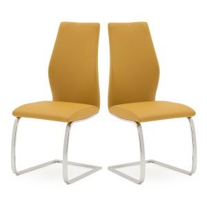 Vida Living Elis Dining Chair Pumpkin Pair